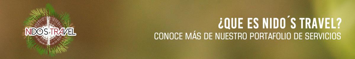 Banner-Nidos-Travel-Quienes-Somos